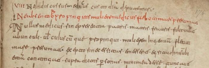 Fig. 8 - BNF_4667, f. 176r copy